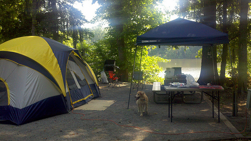 Camping at Prairie Creek Campground by PamB
